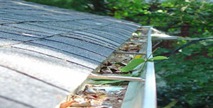 The Importance of Regular Gutter Maintenance
